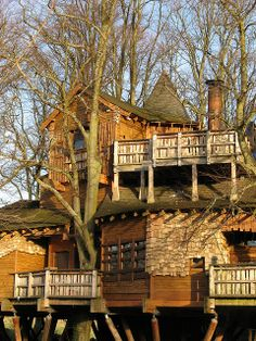The Alnwick Garden Tree House in Scotland. Go there for a drink, high tea, dinner