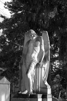 Statue of a male angel Cemetery Angels, Cemetery Statues, Cemetery Art, Angel Statues, Buddha Statues, Angels Among Us, Angels And Demons, Angel Sculpture, Sculpture Art