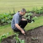 seed sowing and propagation from cuttings
