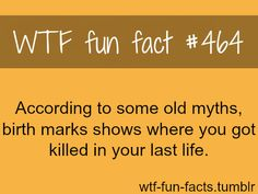 MORE OF WTF-FUN-FACTS are coming HERE funny and weird facts ONLY well according to my birthmark I was stabbed in my upper thigh and the shot in my fore head. The More You Know, Look At You, Good To Know, Did You Know, Just For You, Wtf Fun Facts, Funny Facts, True Facts, Funny Quotes