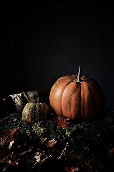 Pumpkins, abóboras