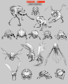 Probably one of my favorite canned monsters for Evolve: The Host. Went through a lot of disturbing iterations based off the ideas originally concocted b. Alien Concept Art, Creature Concept Art, Monster Design, Monster Art, Alien Creatures, Fantasy Creatures, Creature Feature, Creature Design, Insect Art