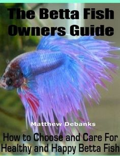 I want to buy a Betta Fish since my parents have deprived me with no pet I want a Betta fish. They are very cheap. ;)