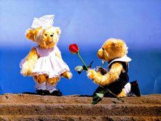 teddy-proposing-cute-teddy-day-hd-wallpaper-images