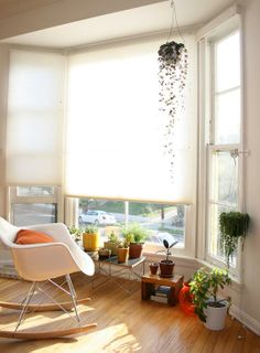 bay window with shades and a pretty hanging plant