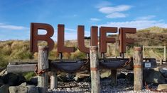 An annual event celebrating the world famous Bluff Oyster. Oyster Festival, Food Festival, Oyster Recipes, South Island, World Famous, Oysters, Travel Guide, Vacations, Texture
