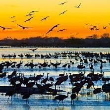 Best Places To Live, Best Places To Travel, North Platte, Only In America, Us Road Trip, Lake Water, Natural Wonders, Nebraska, Travel Usa