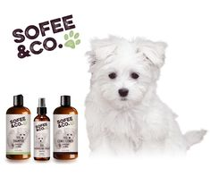 Natural grooming products for your dog