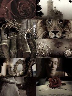 Fairy Tale Meme:(1/1) Fairy Tale Beauty and the Beast