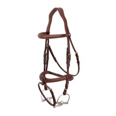 noir Bridon Chique Harrys Horse cob