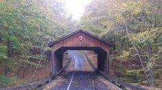 Pierce Stocking Covered Bridge  http://www.onlyinyourstate.com/michigan/covered-bridges-mi/
