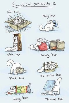 Simon's Cat Box Guide No. II everyone loves Simon :): Cats, Simons Cat, Funny, Cat Boxes, Animal Funny Cats, Funny Animals, Cute Animals, Cat Simons, Crazy Cat Lady, Crazy Cats, Comic Cat, Cat Comics, All About Cats