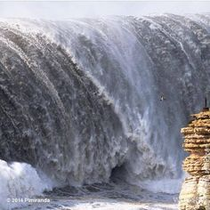 Nazare Portugal Can you see the BIRD? Amazing pic by @Tricia Miranda