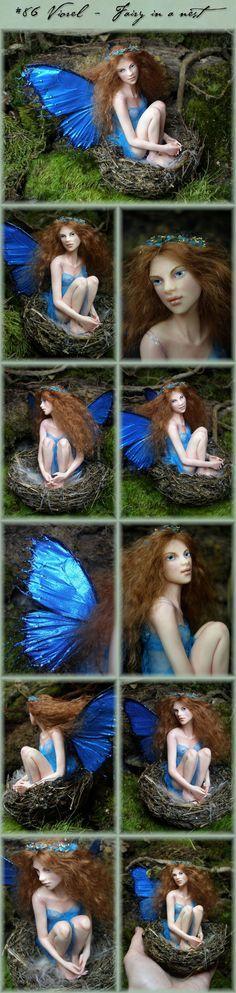 Nenúfar Blanco ~ #86 Viorel - Fairy in a nest