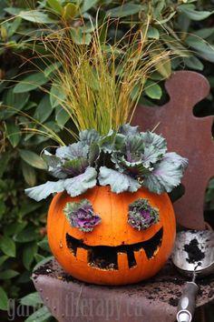 Halloween pumpkin planter: Jack-o-plantern from Garden Therapy! Diy Halloween, Holidays Halloween, Halloween Pumpkins, Halloween Decorations, Bricolage Halloween, Amazing Pumpkin Carving, Easy Pumpkin Carving, Scary Pumpkin, Nuit D'halloween