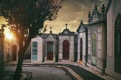 Row of family crypts at sunset in Prazeres Cemetery in Lisbon, Portugal