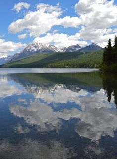 Bowman Lake in Glacier National Park looking absolutely beautiful, June Photo: National Park Service Glacier National Park Montana, Glacier Park, Places To Travel, Places To Go, Travel Destinations, Beautiful Places, Beautiful Pictures, Beautiful Life, Big Sky Country