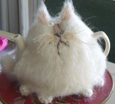 knitted cat tea cozy - love it! Or just make me a stuffed version to sit around and make me smile.