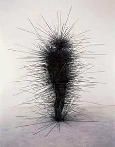 by Antony Gormley. [Image #4 of Week: Feb. 10th - 14th]. I really like this image because it's like a human caterpillar, a person taken over by dark feeling left only to stand and attack others. I wonder what he meant by this sculpture, it's kind of depressing.
