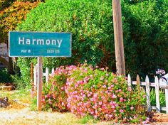 A beautifully, quaint little place on the central coast of wine country with my favorite chardonney...Harmony, CA
