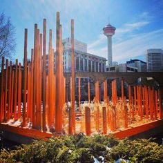 Calgary, Seattle Skyline, Places Ive Been, Tower, Canada, Instagram Posts, Travel, Outdoor, Life