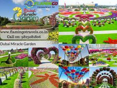 Visit Dubai Miracle Garden with #DubaiTourPackages it is the world's largest natural flower garden. It also has the world's largest flower wall with a circumference of 1 Kilometre.