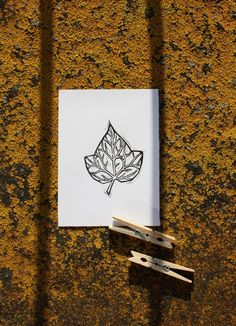 ivy poisonivy card grass herb herbs leaf leaves lino love nature pagan plant print sample simple stamp wild wildchild naturelove paganlove art besttry klaudiaakcilkis paganbeauty blackandwhite blackwhite creation flower flowers graphics linocut linoprint monochromatic monochrome naturalbeauty naturelover printing printmaking traditional traditionalart traditionalartwork naturelovers printset akcilkis flauteflaute
