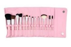 15pc Pink Professional Brush Set by Pree Cosmetics. $65.00. 15pc Professional Pink Makeup Brush Set Professional set is made with our Pink Series brushes, and constructed with a high grade sable and goat blend. Each brush features a matte silver ferrule and birch wood handle covered in the shade of pink. Set includes: Jumbo Powder Dome Brush, Oval Lip Brush, Angle Blush Brush, Angle Brow Brush, Flat Top Bronzer Brush, Mini Smudger Brush, Deluxe Oval Foundation Brush, Taklon An...