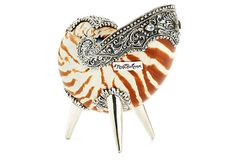 Neda Behnam  Home Decor Nautilus Shell w/ SS Accent