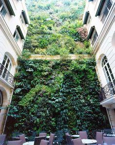 vertical garden, hotel pershinghall, paris