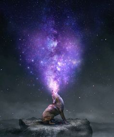 "As he screams to The Void, ""I don't want to be alone…"" Our Universe is created. ~Jamie Hendon"