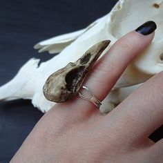 Mini Raven Skull Ring 1.5 Bird Skull  Cast Bone by RavenRanch, $23.95