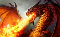 dragons breathing fire | dragon crachant du feu