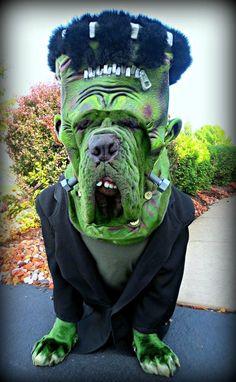 Dog Halloween Costume Frankenstein More Pet Accessories, Dog Toys, Cat Toys, Pet Tricks Diy Dog Costumes, Kids Costumes Boys, Diy Halloween Costumes For Kids, Funny Costumes, Halloween Desserts, Costume Halloween, Costume Ideas, Snowman Costume, Group Halloween