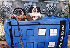 The Doctors Who? - 2012 Halloween Costume Contest