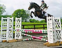 Image result for horse over jump
