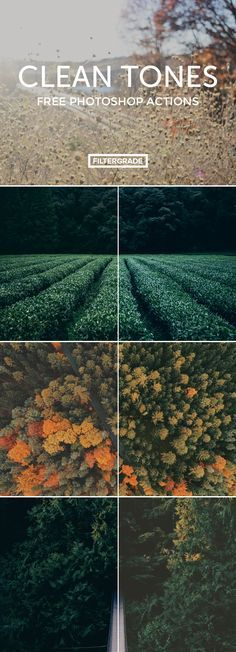 Get beautiful tones for your photography work in seconds with Clean Tones, a beautiful little set of free Photoshop actions.