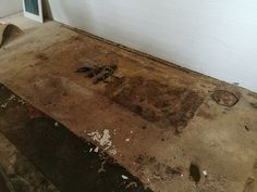 Mould contaminated carpet in a property to be cleaned and restored