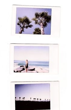 We can't get enough of Polaroids and palm trees. And Polaroids OF palm trees! I Love The Beach, Summer Of Love, Polaroid Pictures, Polaroids, Polaroid Ideas, Summertime Sadness, Tumblr, Portrait, Summer Vibes