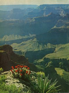 Vintage Grand Canyon.I want to go see this place one day.Please check out my website thanks. www.photopix.co.nz