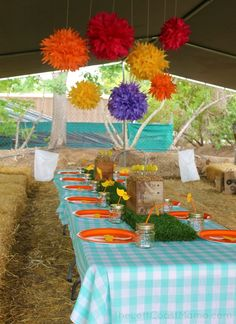 lorax party at tanaka farms