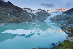 Des blocs de glace s'enfonçant dans les lacs glaciaires: le glacier de Gauli dans l'Oberland bernois