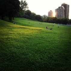 Montreal by Akoui Hakaki