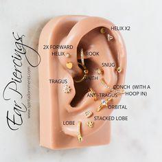 Fake Piercing, Tragus Piercings, Ear Piercing Names, Ear Piercings Chart, Types Of Ear Piercings, Cute Ear Piercings, Body Piercing, Ear Gauges, Ear Jewelry
