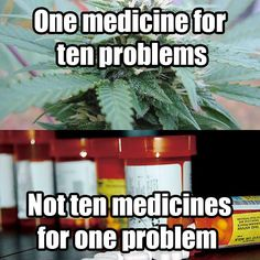 Just what the doctor SHOULD have ordered: Marijuana. Chronic pain can be control. Medical Cannabis, Cannabis Oil, Cannabis Edibles, Marijuana Facts, Endocannabinoid System, Cbd Hemp Oil, Buy Weed Online, Snitch, Chronic Pain