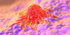 Cancer cells also have THEIR stem cells.
