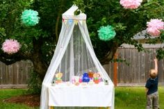 cute idea.  I've got the perfect thing to create this for MC's party.  hoping the Butterfly farm has some trees to hang it.