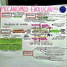 #RESUMO #BIOLOGIA #MECANISMOS  #EVOLUÇÃO ❤❤❤Também já está disponível para download no blog (RESUMOS ...