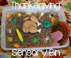 Thanksgiving Sensory Bin |Still Playing School