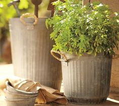 Ribbed Galvanized Metal Bucket with Rope Handles Ribbed Galvanized Metal Buckets from Pottery Barn. Front Porch Planters, Galvanized Planters, Outdoor Planters, Galvanized Metal, Ceramic Planters, Garden Planters, Outdoor Gardens, Potted Garden, Diy Planters